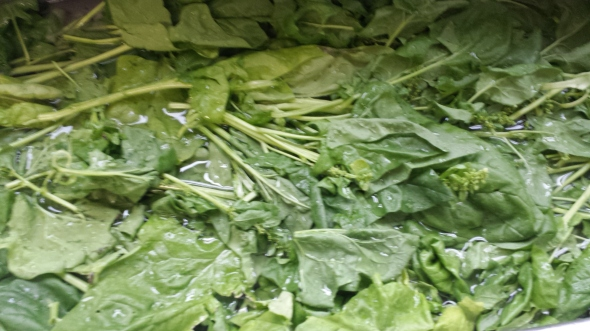 The same process with giant spinach leaves.