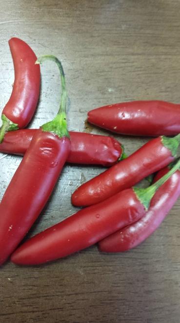 Garden-fresh serranos.