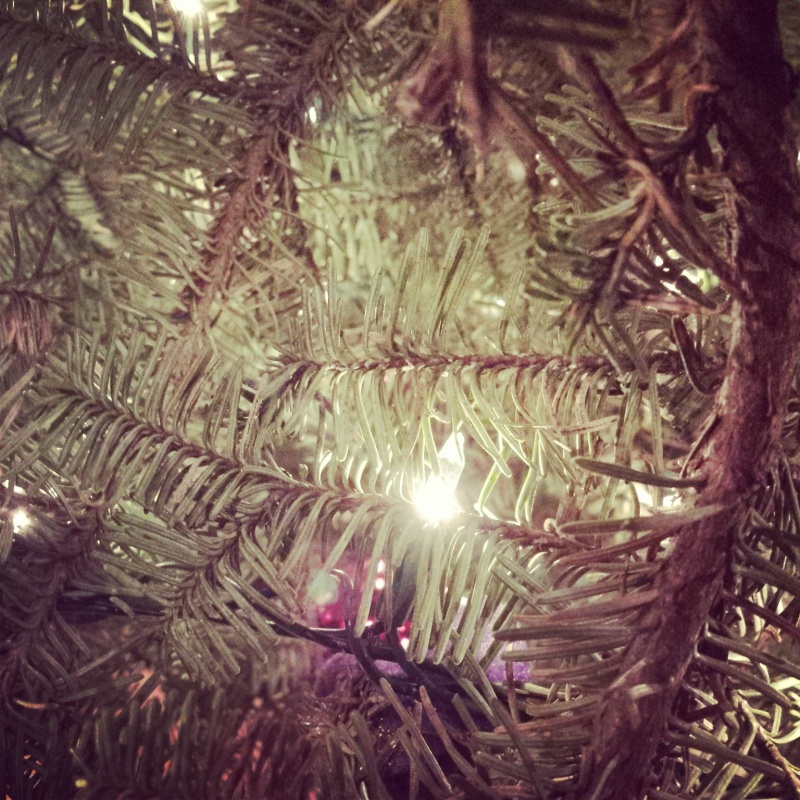 The scent and the quiet of laying underneath the Christmas tree and staring upward.